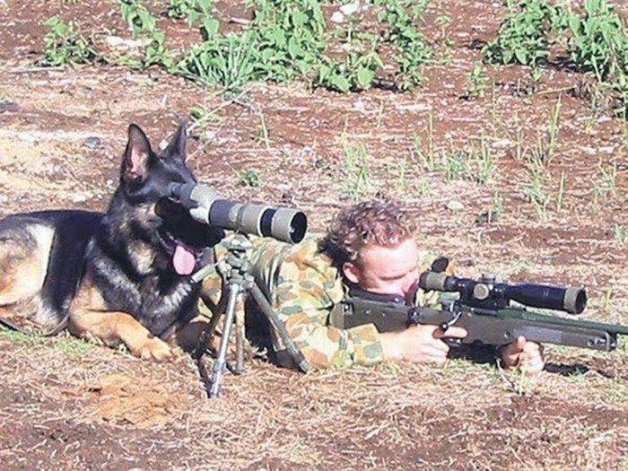 приколы военных фото