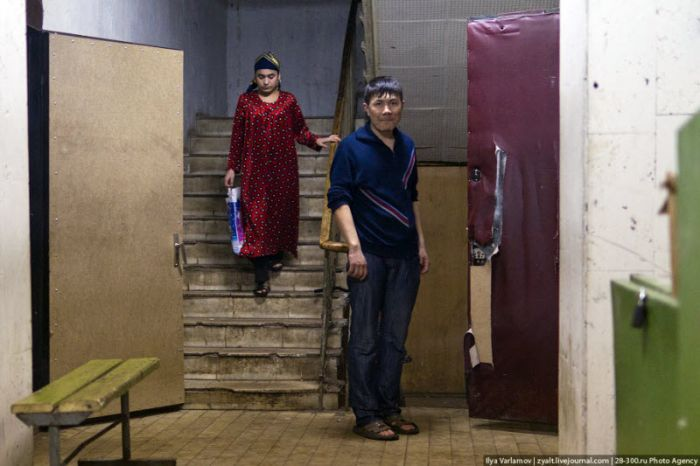 Проститутки в новосибирске транссексуалы