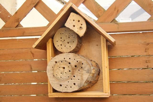 Домики для диких пчел своими руками 87