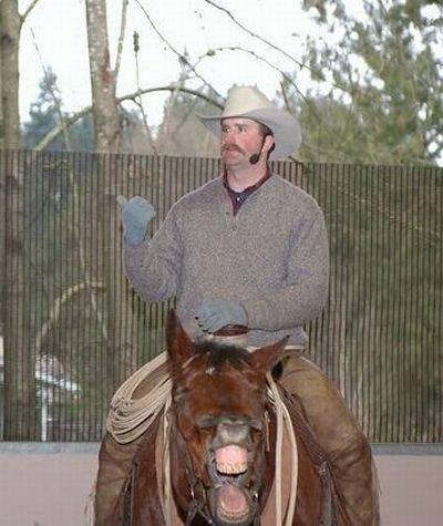 Konji fotobombe (23 fotografije)
