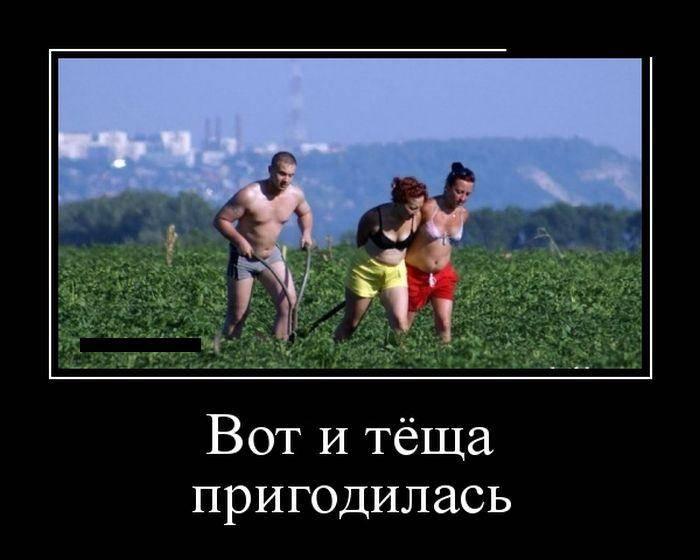 Демотиваторы №590 (30 фото)