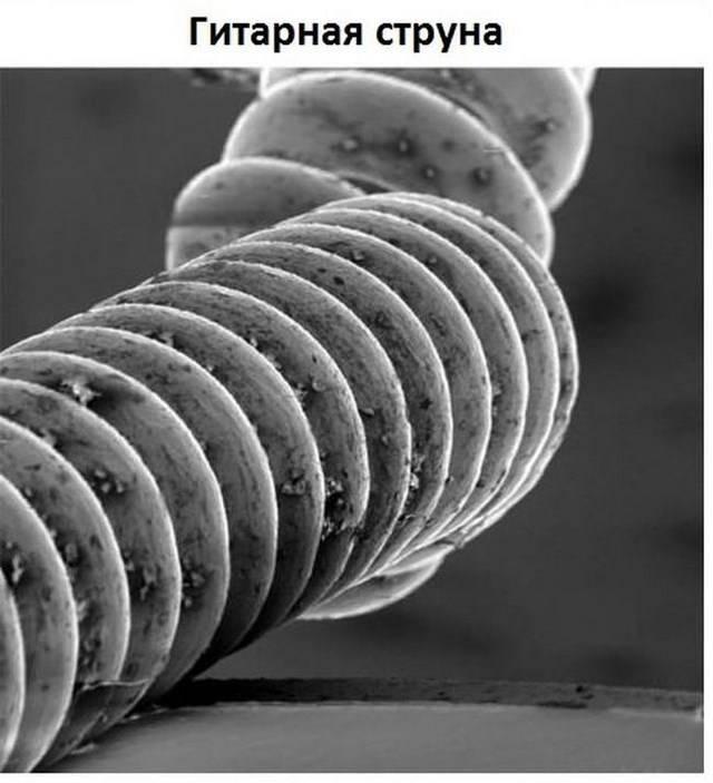 Обыденные предметы под микроскопом (11 фото)