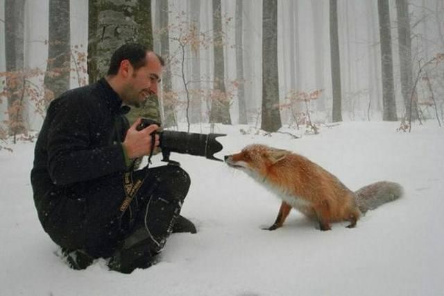 Težak posao fotografa (38 fotografija)