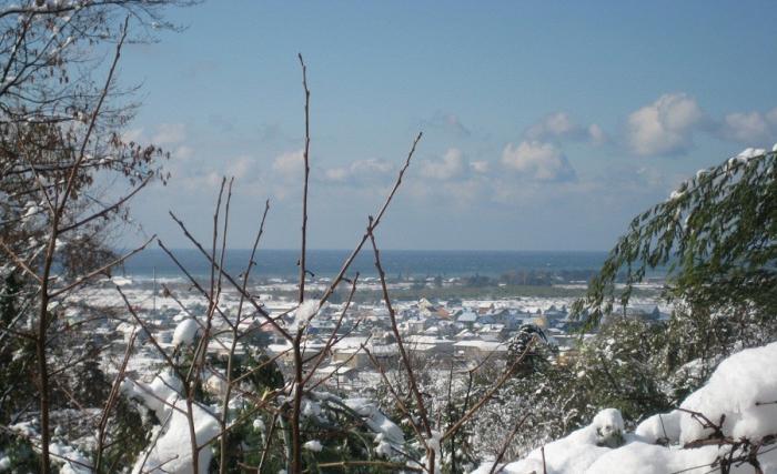 Город адлер зимой картинки