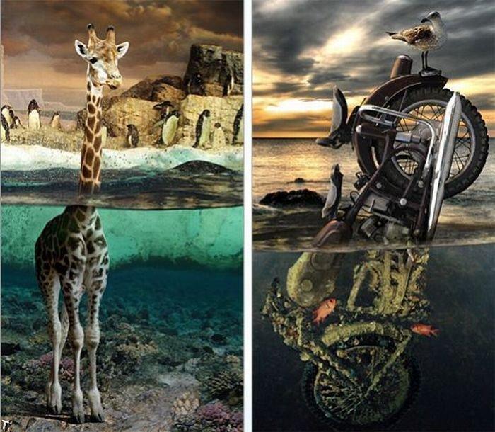 Kreativne fotografije (52 fotografije)