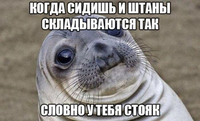 Подборка прикольных фото №883 (106 фото)