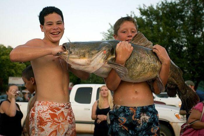 сонник поймать три рыбы на удочку