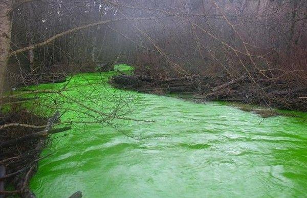 В Канаде произошла необъяснимая природная катастрофа