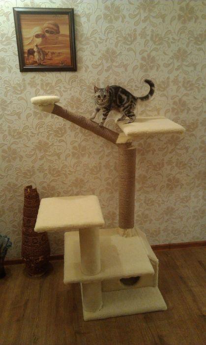 Кошачий дом из подручных материалов