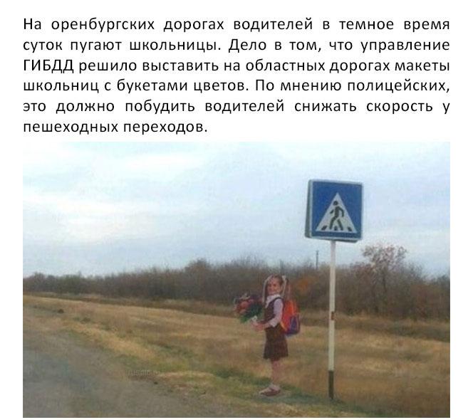 На дорогах оренбургской области