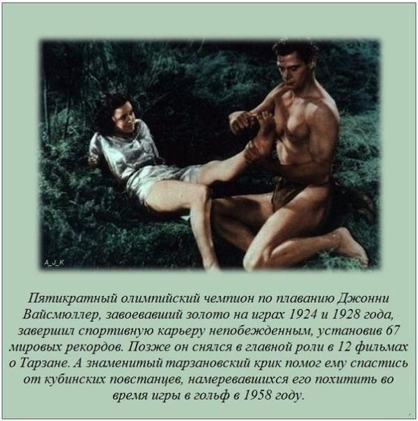 интересные факты о герани