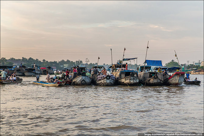Плавучий рынок в дельте Меконга (35 фото)