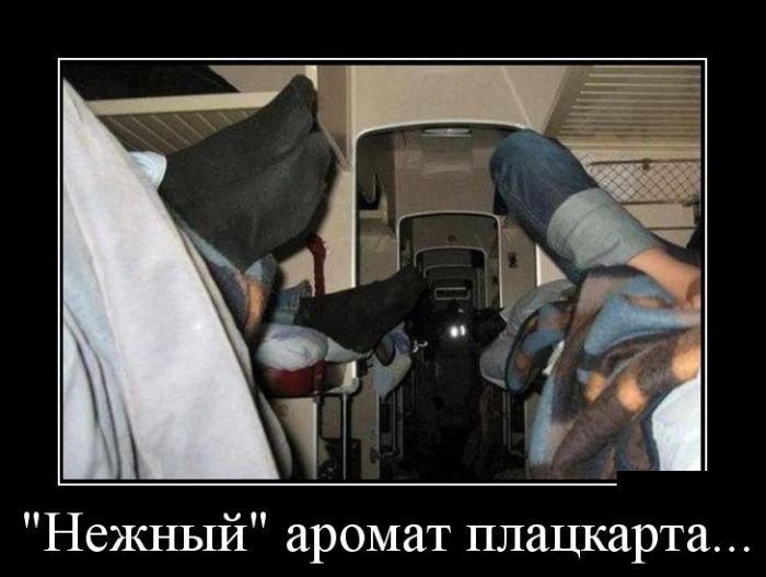Демотиваторы №1070 (30 фото)