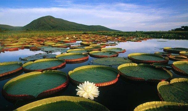 Невероятные национальные парки на Земле
