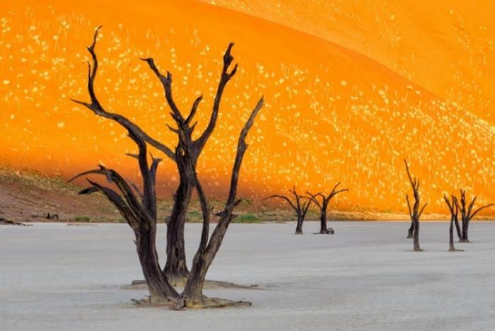 Самые необычные, удевительные явления природы - Страница 3 1441258189_12
