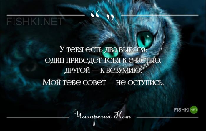 Все высказывания чеширского кота