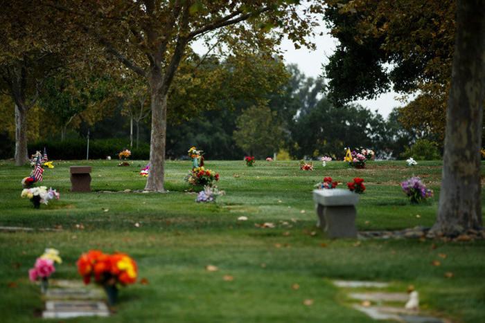 Поклонники Стива Джобса заняты поисками его могилы (6 фото)