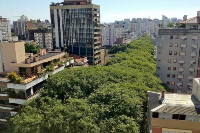 Самая зеленая улица в мире (10 фото)