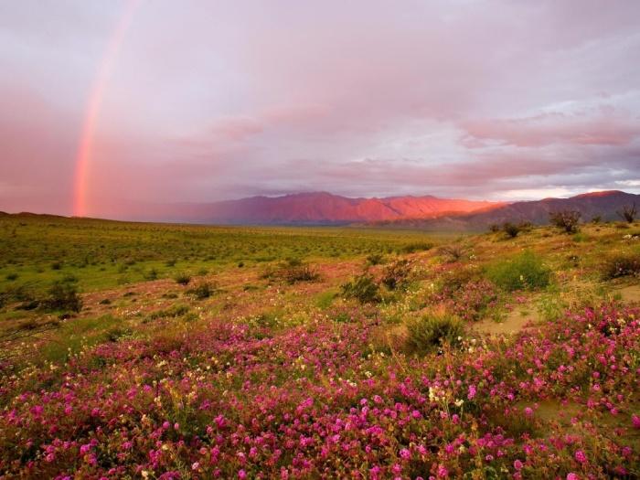 Самые необычные, удевительные явления природы 1452685786_19