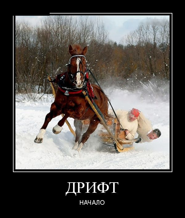 Демотиваторы января (30 фото)