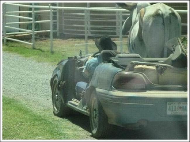 видео как на машине знакомиться