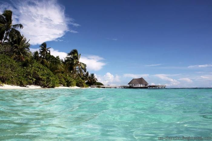 Райский отдых на Мальдивах (37 фото)