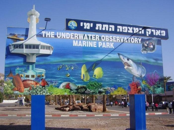 Удивительная подводная обсерватория в Эйлате, Израиль (20 фото)