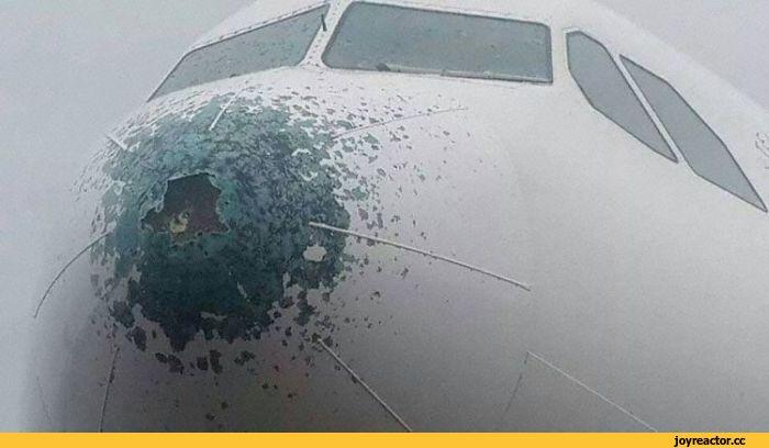 Почему молнии не вредят самолетам? (4 фото)