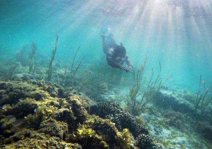 Добро пожаловать в рай: Каламианские острова (12 фото)