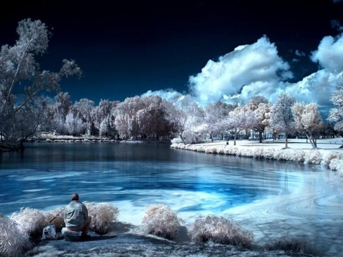 Инфракрасная фотография! Удивительные снимки