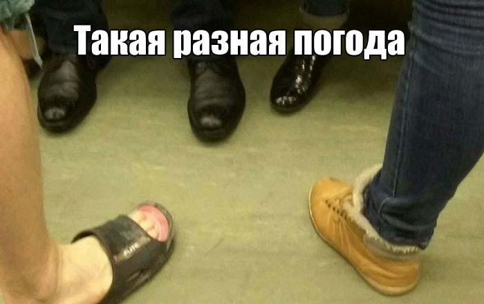 Подборка прикольных фото №1611 (102 фото)