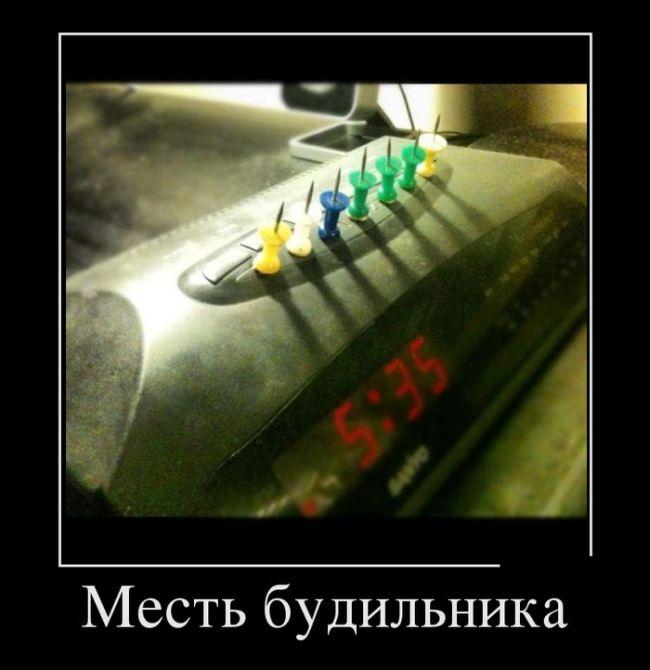 Демотиваторы №1637 (30 фото)