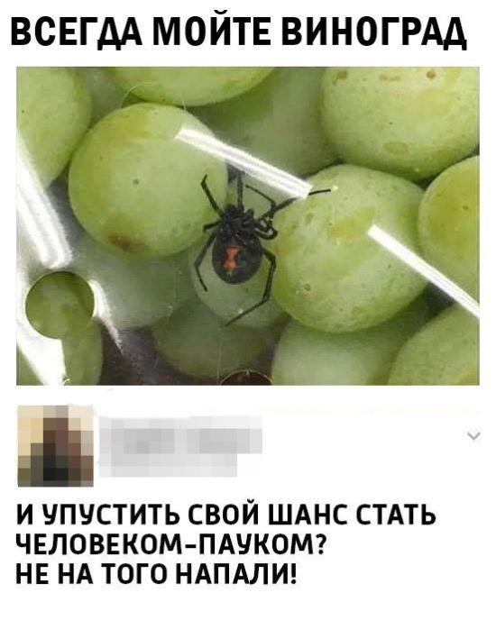 Подборка прикольных фото №1659 (103 фото)