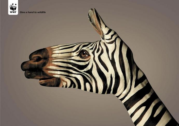 Очень мощная социальная реклама о животных (18 фото)