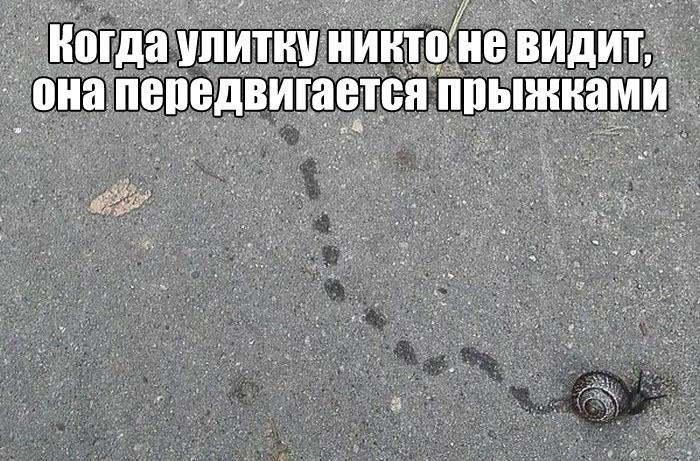 Подборка прикольных фото №1683 (107 фото)