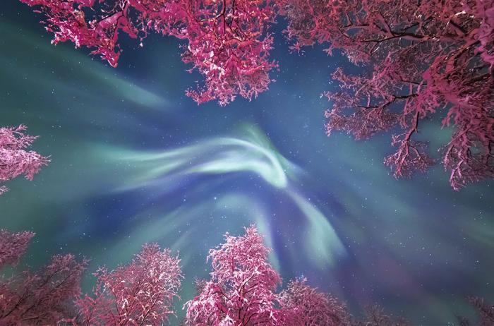 Далекие и близкие миры с конкурса «Астрономический фотограф года» (14 фото)