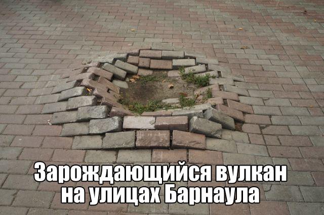 Подборка прикольных фото №1704 (104 фото)