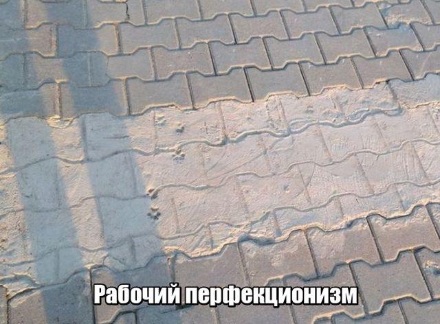 Подборка прикольных фото №1726 (101 фото)