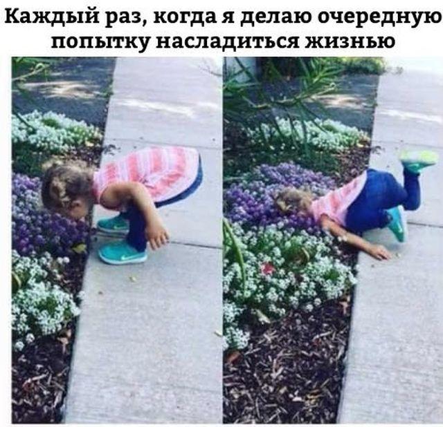 Подборка прикольных фото №1764 (105 фото)