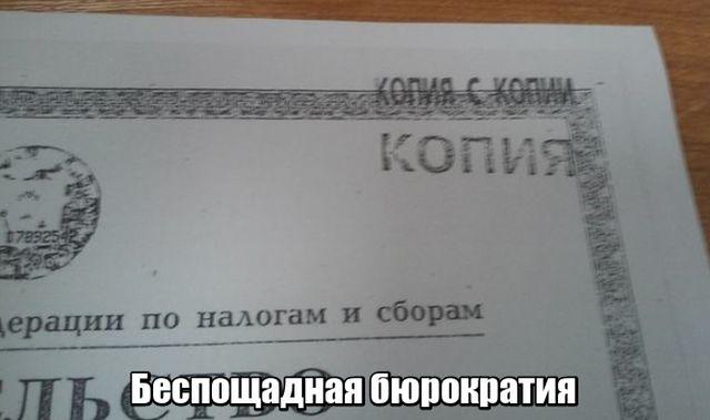 Подборка прикольных фото №1771 (111 фото)