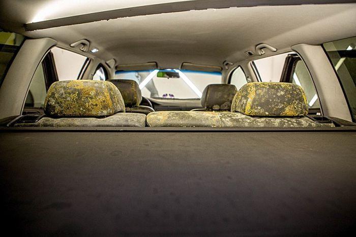 Ужасный салон автомобиля (6 фото)