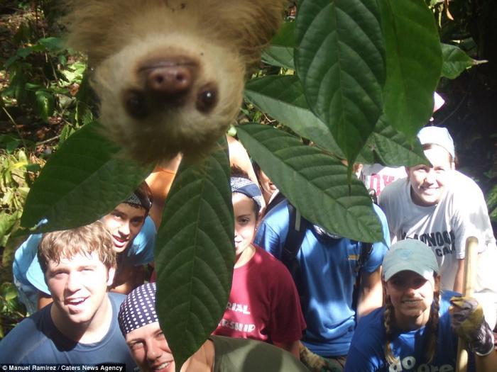 Забавнейшие фотографии животных в селфи (27 фото)