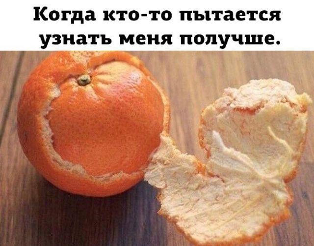 Подборка прикольных фото №1826 (48 фото)