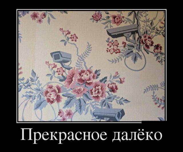 Демотиваторы №1826 (30 фото)