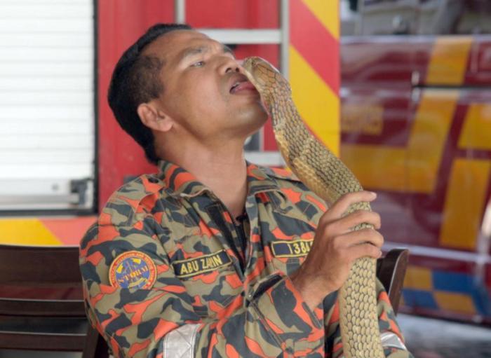 Знаменитый укротитель кобр погиб от укуса (5 фото)
