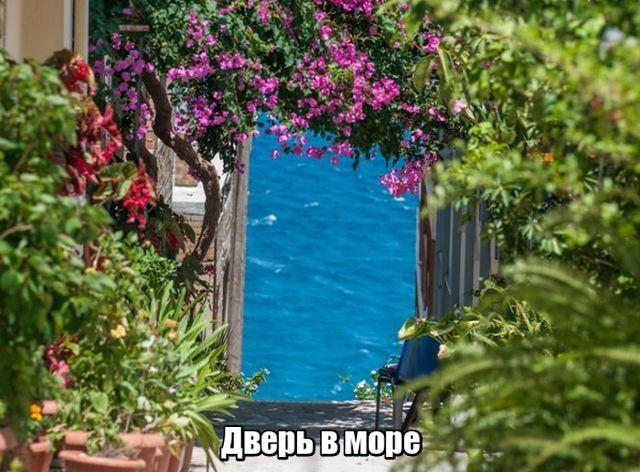 Подборка прикольных фото №1834 (46 фото)