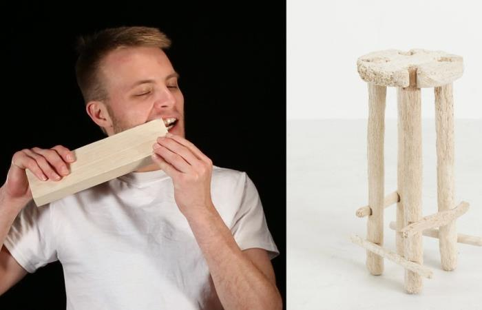 Человек-бобер: парень сделал табуретку, используя зубы (4 фото)