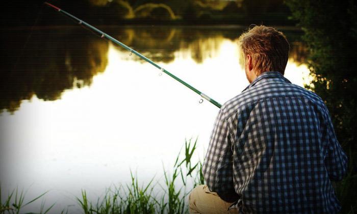 Как выбрать поплавок для рыбалки (4 фото)