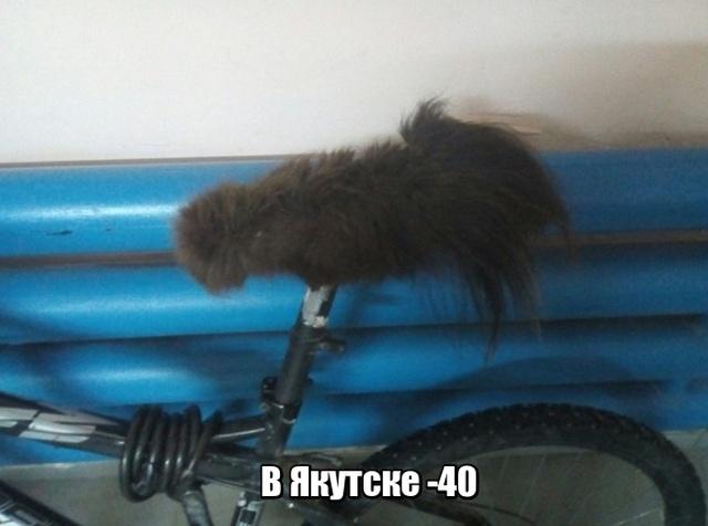 Подборка прикольных фото №2018 (41 фото)