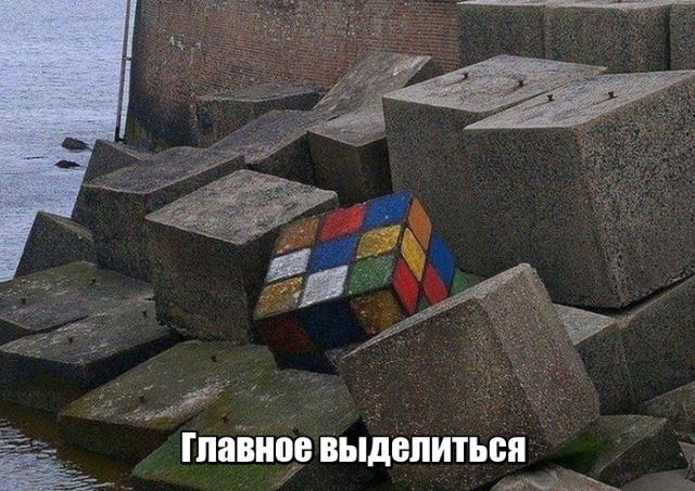 Подборка прикольных фото №2025 (45 фото)